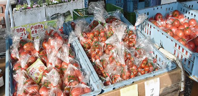 小俣園芸のトマト