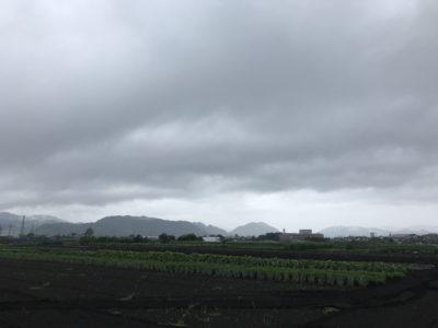 さがみはらの農風景 ~ 梅雨空の農地 ~